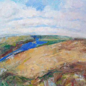 bird's eye view of river flowing among hillsin