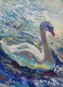 white swan swimming in water